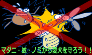マダニ・蚊・ノミから愛犬を守ろう!!